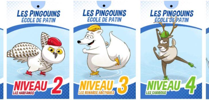 Programme les Pingouins : les 5 niveaux